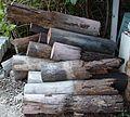 House stumps eaten by termites.jpg
