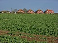 Houses and farmland, Dunsden - geograph.org.uk - 746376.jpg