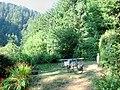 Humbug Mountain State Park (10376054736).jpg