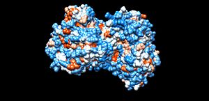 Cholesterol 7 alpha-hydroxylase - Image: Hydrophobic structure of Cholesterol 7 alpha hydroxylase