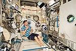 ISS-58 Oleg Kononenko works inside the Kibo lab (1).jpg