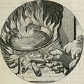 Iacobi Catzii Silenus Alcibiades, sive Proteus- (1618) (14749655035).jpg