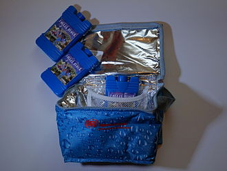 Lunchbox - Insulated thermal bag with ice packs
