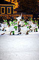 Ice show Vintervirvlar at Liseberg 2009 4.jpg