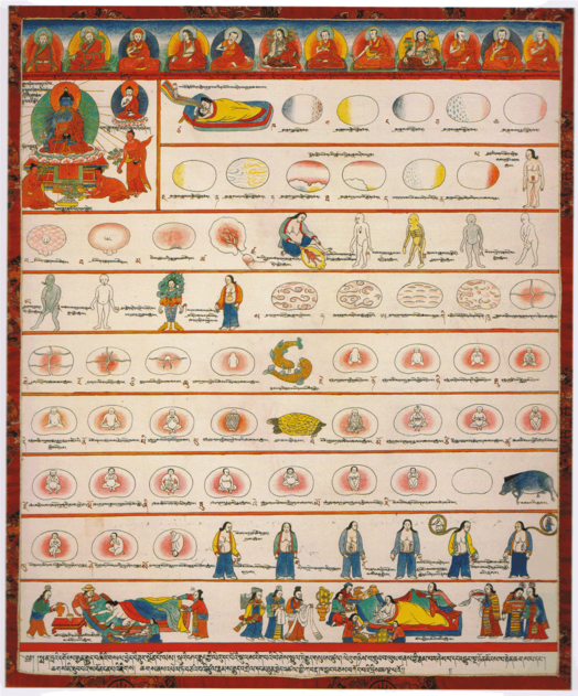 "Illustration (Conception to Birth) from the ""Blue Beryl"" or ""Ornament to the Mind of Medicine Buddha- Blue Beryl Lamp Illuminating Four Tantras"" written around the year 1720 by Desi Sangye Gyatso (1653-1705), the regent (Desi) of the 5th Dalai Lama (1617-1682), who founded the School of Men-Tsee-Khang on Chagspori (Iron Mountain) in 1694 Illustration (Conception to Birth) from Ornament to the Mind of Medicine Buddha- Blue Beryl Lamp Illuminating Four Tantras written around the year 1720 by Desi Sangye Gyatso (1653-1705), the regent (Desi) of the 5th Dalai Lama.png"