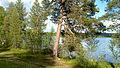 Inari-Finland-2012-07-02-14-32-020.jpg