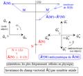 Invariance d'un champ vectoriel par antisymétrie axiale.png