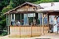 Iwatayama Monkey Park (3811310724).jpg