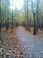 Izmailovon puisto syksyllä.jpg