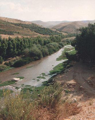 Zarqa River - Zarqa River