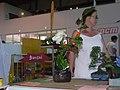 JapaNîmes - Ambiance - P1400497.jpg