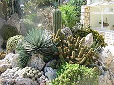 Jardin Exotique de...
