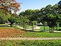 Jardin René Boylesve Larkanal-Strasbourg Tours.jpg