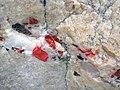 Jasper pebbles in quartzite (Lorrain Formation, Paleoproterozoic, ~2.3 Ga; Ottertail Lake Northeast roadcut, near Bruce Mines, Ontario, Canada) 6 (47708999821).jpg