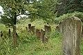Jewish Cemetery Staryi Sambir 2008 06.jpg