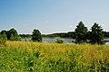 Jezioro orle podlaskie.jpg