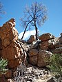 Jingemia Cave 5 - panoramio.jpg