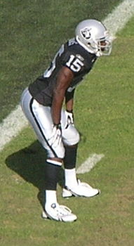 Johnnie Lee Higgins at Falcons at Raiders 11-2-08.JPG