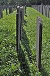 joodse begraafplaats diemen, veld a-3