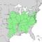 Juglans nigra range map 1.png