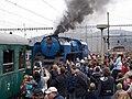 Křivoklát expres, Beroun, lokomotiva Albatros.jpg