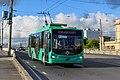 Kaliningrad 05-2017 img34 trolley1.jpg