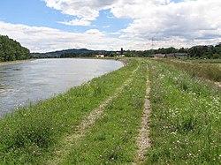 Kanal HE Zlatoličje - panoramio.jpg