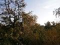 Kaniv, Cherkas'ka oblast, Ukraine - panoramio (16).jpg