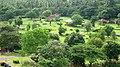 Kanjirapuzha Gardens - panoramio.jpg