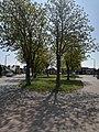 Kardinaal Cardijnplein, Nieuwenhove (Oostkamp).jpg