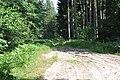 Karstums sajaukts ar dunduriem, Olaines pagasts, Olaines novads, Latvia - panoramio.jpg