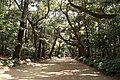 Kashima Shrine 08.jpg