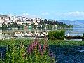 Kastoria pelicans in summer.jpg