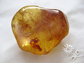 A dark gold transparent smooth lump of resin