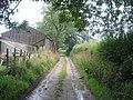 Kirk Syke Lane - geograph.org.uk - 525293.jpg