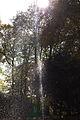 Kollenbergpark as-eos-15m-rgb-2014-10-18-3275 (15546305116).jpg