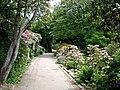 Konsul Perssons villa trädgård.jpg