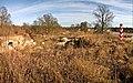 Kostrzyn nad Odrą - panoramio (10).jpg