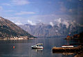Kotor bay coast.jpg