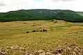 Krajobraz w Parku Narodowym Gorchi-Tereldż 08.JPG