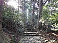 Kumano Kodo pilgrimage route Daimon-zaka World heritage 熊野古道 大門坂05.JPG