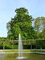 LSG Brühler Schlossgarten 07.jpg