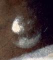 La jeune fille à la perle - Vermeer - détail de la perle.png