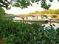 Lake Carnegie from The Princeton University Boat House, Princeton, NJ June 19th, 2010 - panoramio - Gary Miotla (5).jpg