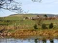 Lakehead from John's Pool - geograph.org.uk - 374968.jpg