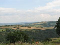 Landscape-IMG 6924.JPG