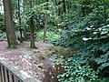 Landschaftsschutzgebiet Waldgebiete bei Dielingdorf und Handarpe LSG OS 00025 Datei 9.jpg