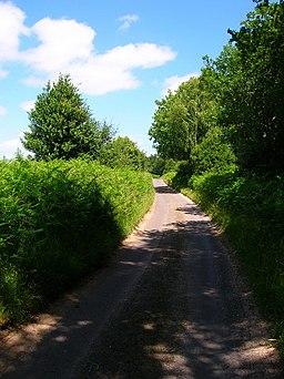 Lane, Woolbeding Common - geograph.org.uk - 864832
