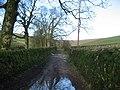 Lane to Cosh (1) - geograph.org.uk - 313886.jpg