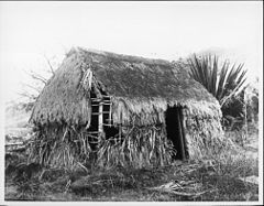 Last grass house on Lanai, 1917 (PP-32-5-004).jpg
